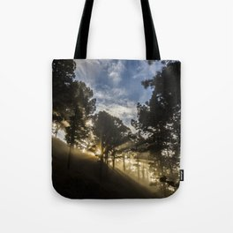 Forest sun Tote Bag