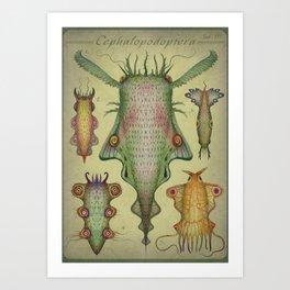 Cephalopodoptera Tab. III Art Print