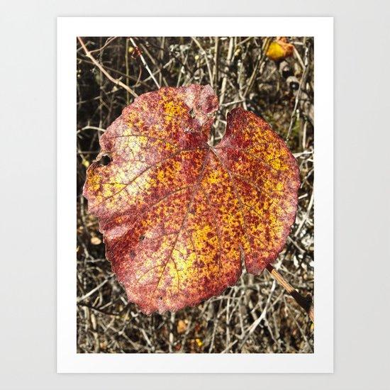 Rusty Autumn Art Print