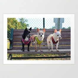 brat pack Art Print