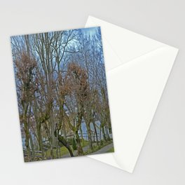 Castle garden Laupheim Stationery Cards