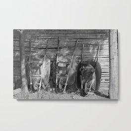 Three Wheelbarrows Metal Print