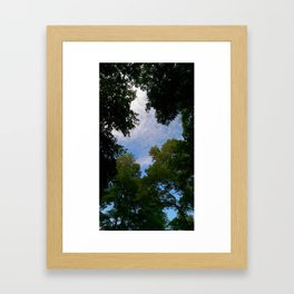 Looking up from nature Framed Art Print