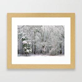 Snowy Swampland Framed Art Print