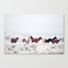 Winter Horseland Canvas Print