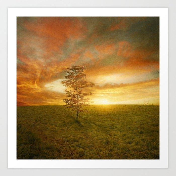 Sunset I C. VII Art Print