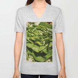 Fresh green lettuce in a grocery store Unisex V-Neck