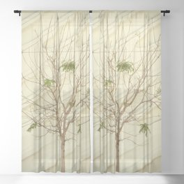 The Broad In the Afternoon Vintage Retro Photography III Sheer Curtain