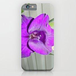 Purple Gladiola iPhone Case