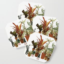 It's a Jungle Out There Coaster