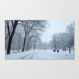 Snow in Central Park VII Canvas Print