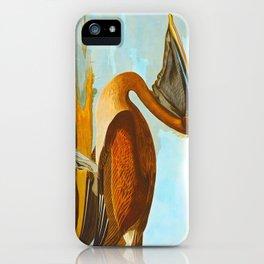 Brown Pelican Illustration iPhone Case