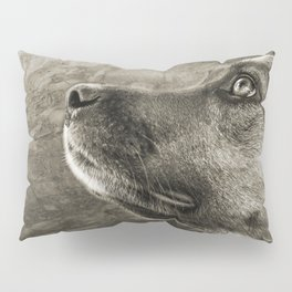 Black and White Loyal Dog Pillow Sham