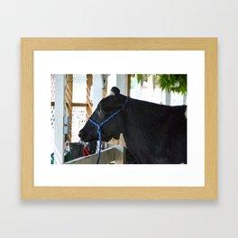 Black And White Cow 3 Framed Art Print