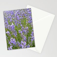french lavender field IIX Stationery Cards