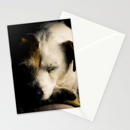 After a Hard Day Stationery Cards