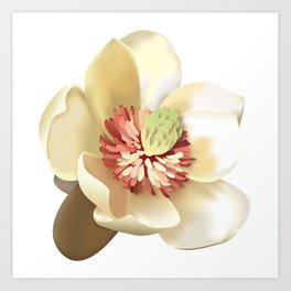 Magnolia! Art Print