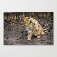 I Got Your Back, Bro! Canvas Print
