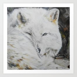 Eye of the Wild by Teresa Thompson Art Print