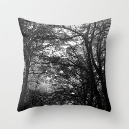 Lenta Conversazione 29 Throw Pillow