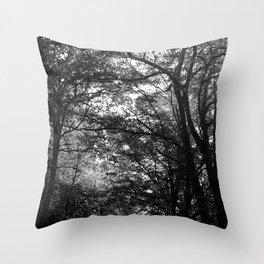 Lenta Conversazione 29 Throw Pillow
