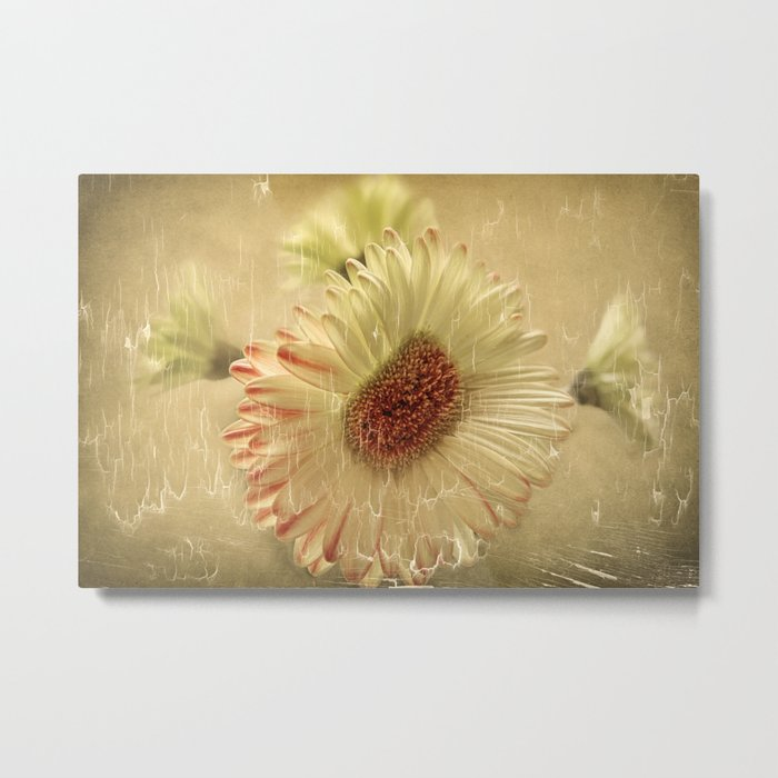 Peaches & Cream Metal Print