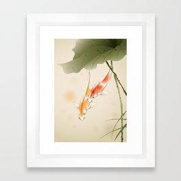 Koi fishes in lotus pond Framed Art Print