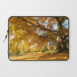 Copper Beech in Autumn Glow Laptop Sleeve