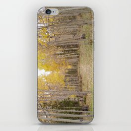 Now Theres a Campsite! iPhone Skin
