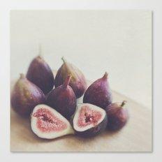 Figs. A Little Figgy Canvas Print