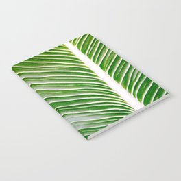 Big Leaves - Tropical Nature Photography Notebook
