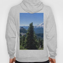 Image Alaska USA State Park Nature Spruce Mountains Sky park forest landscape photography Trees mountain Parks Scenery Forests Hoody