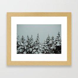 Frozen Pines Framed Art Print