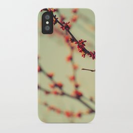 When spring was autumn... iPhone Case