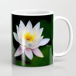 White Water Lily Coffee Mug