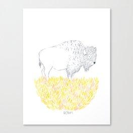 Roam. Canvas Print