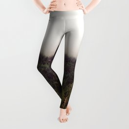 Split I Leggings