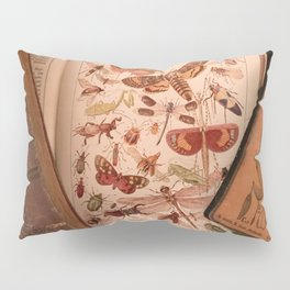 Vintage Insects 2 Pillow Sham