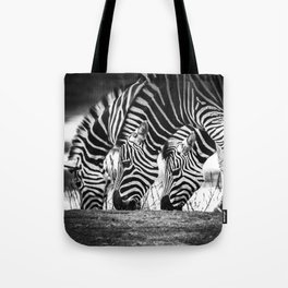 """""""Patterns in Nature"""" Tote Bag"""