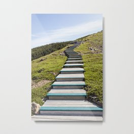 stairs up the hillside Metal Print