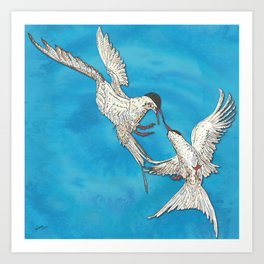 Arctic Terns Art Print