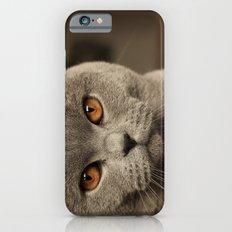 Diesel, the cat - (close up)  Slim Case iPhone 6s