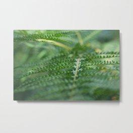 Serene Green Metal Print