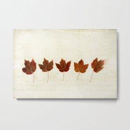 Little Maples Metal Print