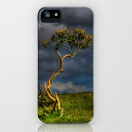 Survive I Will - Lone Gorse on Windswept Moors iPhone Case