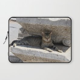Guardian Of The Ruins Laptop Sleeve