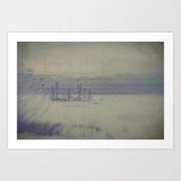 Island in the snow Art Print