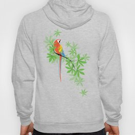 Tropical Parrot Hoody