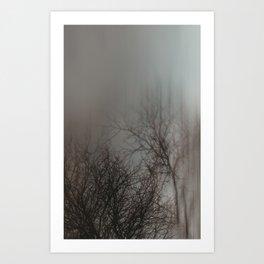 Blurred Branches Art Print