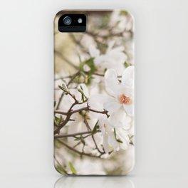 The Magnolia Tree iPhone Case